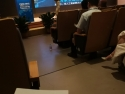 REACH at CHCD – International Symposium