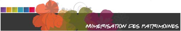numerisation des patrimoines