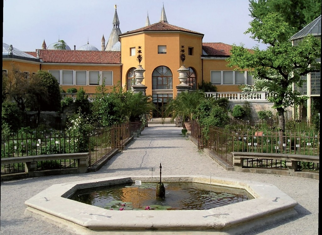 Ortobotanico Padova 2