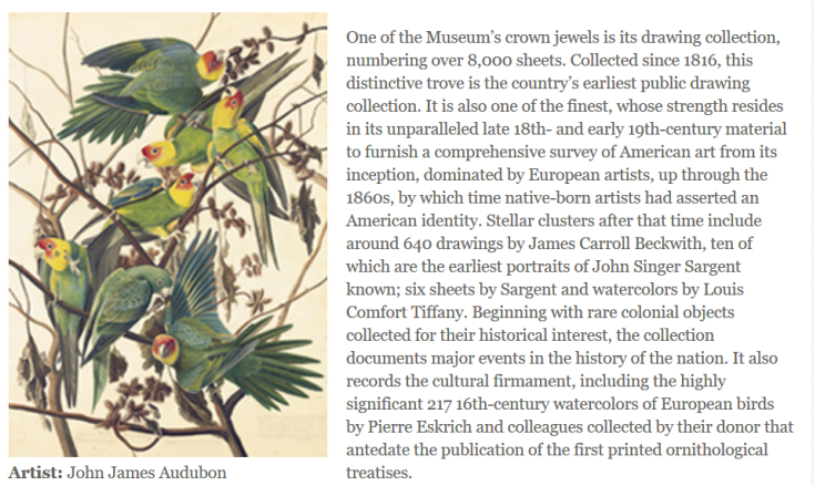 Audubon was an extraordinary lover and observer of birds and nature.